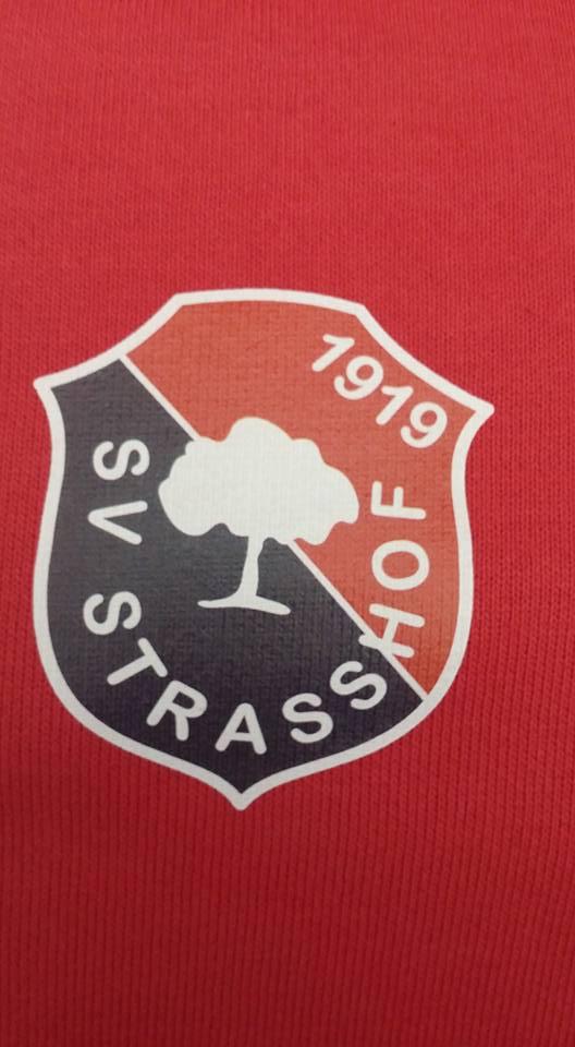 Strasshof Log